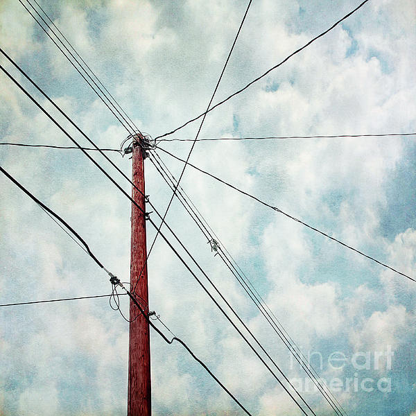 Wire Photograph - Wired by Priska Wettstein
