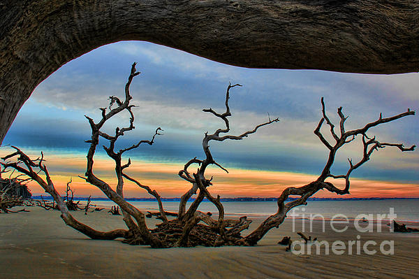 Roots Beach Photograph - Wood Frame At Roots Beach by Leslie Kirk