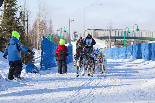 Alaska Photograph - Young Fans Of Mushers by Tim Grams