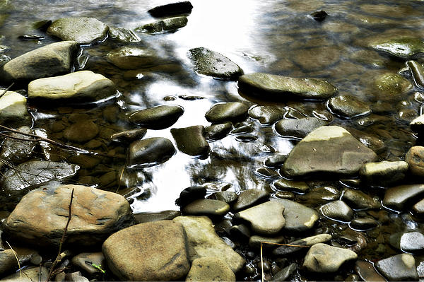 Creek Stones Photograph - Creekstones by Mary Frances