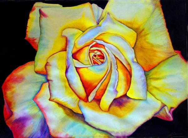 http://fineartamerica.com/images-medium/1-one-perfect-rose-gail-zavala.jpg