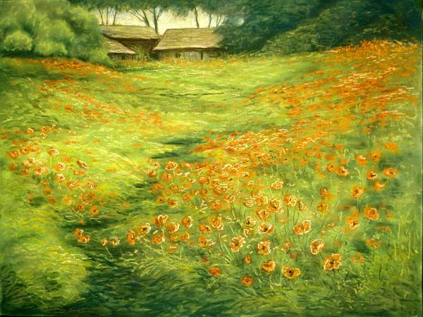 Michael Scherer - Poppies