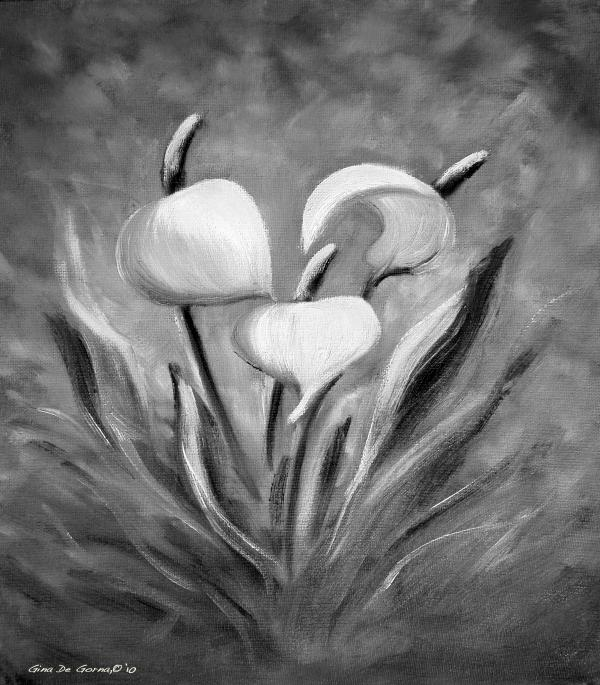 black and white lily pad