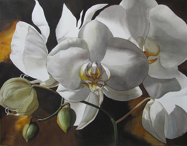 White Orchids Painting - White Orchids Fine Art Print