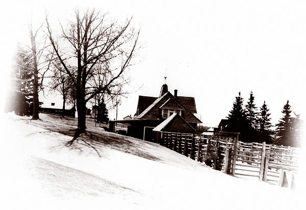 1900 Farm Home Photograph