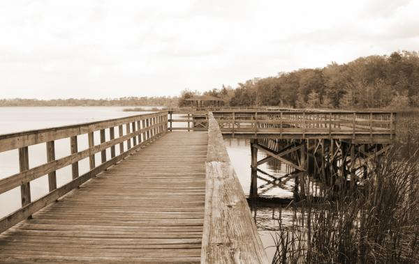 Boardwalk at Lake Ashby FL