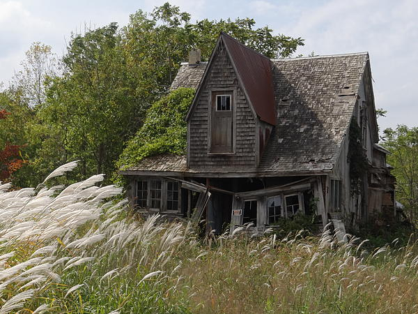 Fashion hermite abandoned places 1 - The beauty of an abandoned house the art behind the crisis ...