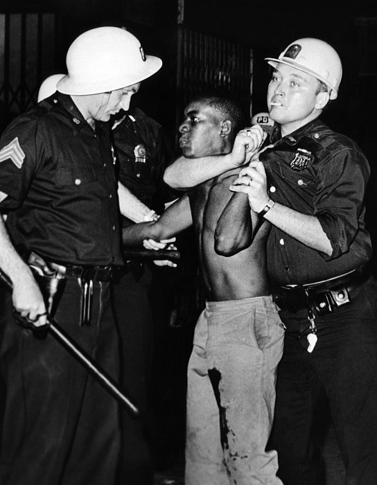 History Photograph - African American Who Has Been Shot by Everett