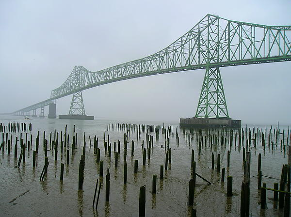 Helen Fern - Astoria - Megler Bridge