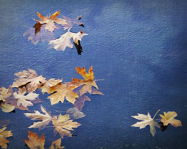 Ginger Denning - Autumn Leaves Drifting
