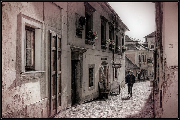 Joan Carroll - Back Street Boy