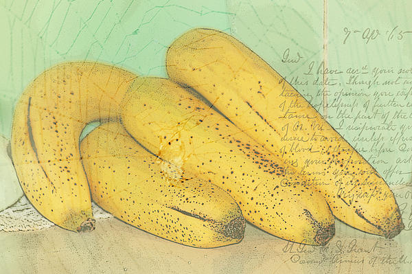 Linda Anne Gibson - Bananas With Overlays