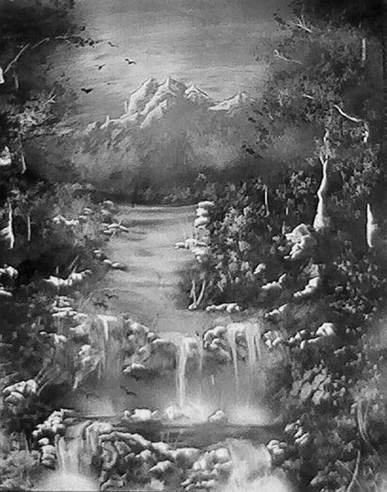 black and white sketches of nature