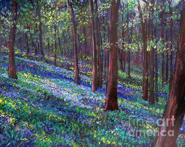 Li Newton - Bluebell Woods