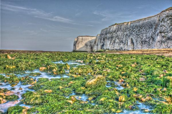 Botany Bay Kent Photograph by Dan Attwood