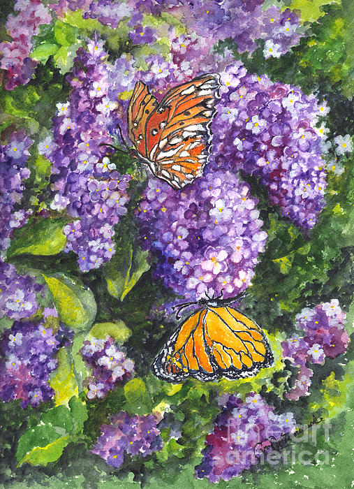 Carol Wisniewski - Butterflies and Lilacs