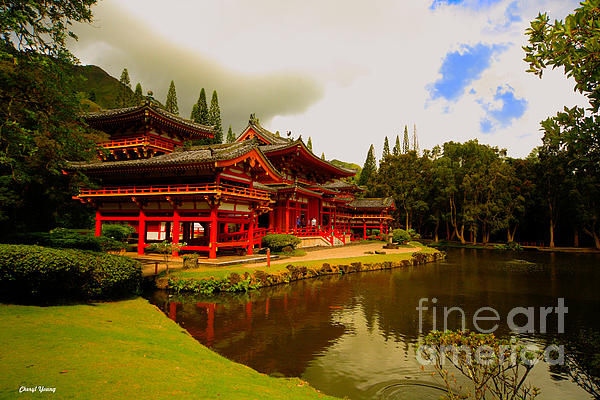 Cheryl Young - Byodo-In Temple 2
