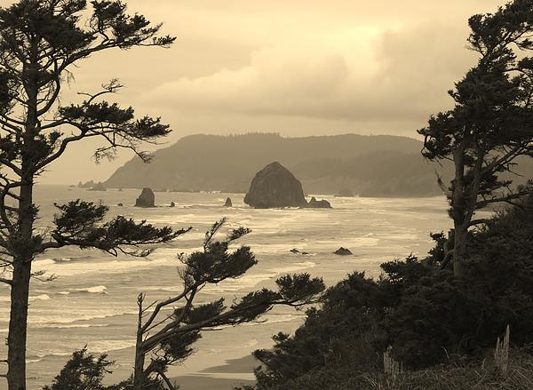 Jim Moore - Cannon Beach 2