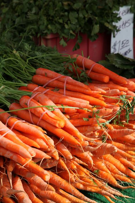 http://fineartamerica.com/images-medium/carrot-bounty-enzie-shahmiri.jpg
