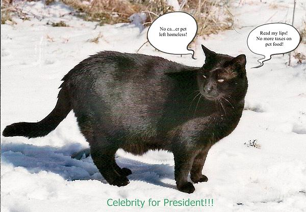 Celebrity For President Photograph  - Celebrity For President Fine Art Print