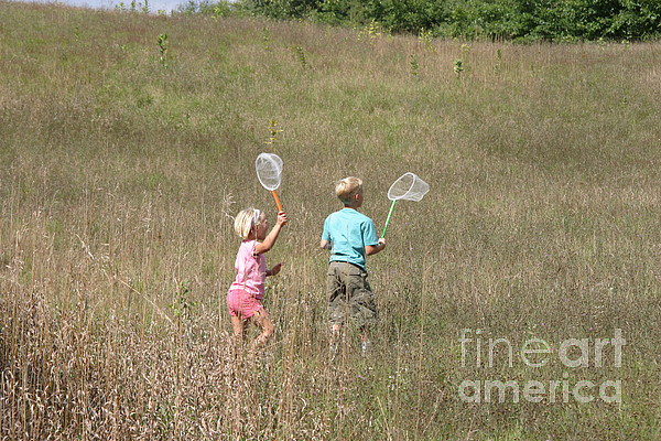 Science Photograph - Children Collecting Insects by Ted Kinsman