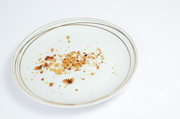cookies-crumbs-in-an-empty-plate-sami-sa