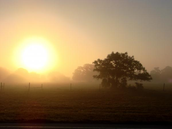 http://fineartamerica.com/images-medium/country-morning-sunrise-kimberly-camacho.jpg