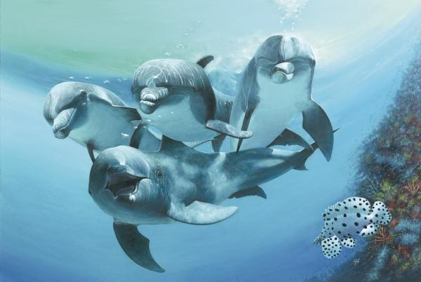 http://fineartamerica.com/images-medium/dolphins-durwood-coffey.jpg