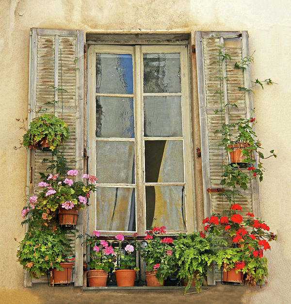 wind and window flower Wind and window flower damanhuri focuses on analysis of the intrinsic  element of the poem the poems was analyze are to edward and wind and  window.