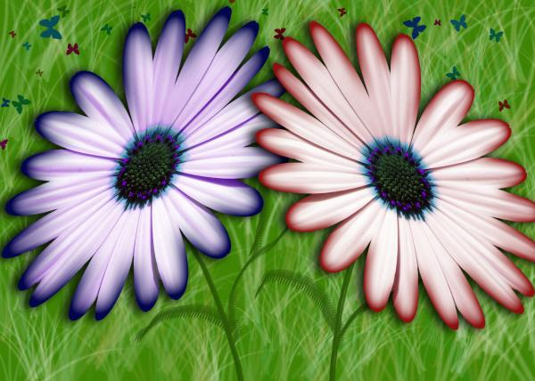 Flowers and Butterflies Photograph - Flowers and Butterflies Fine Art Print
