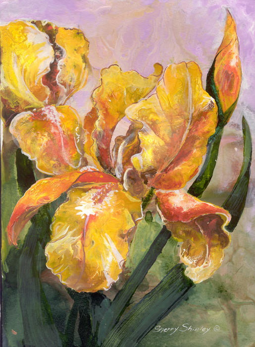 Golden Iris Painting  - Golden Iris Fine Art Print