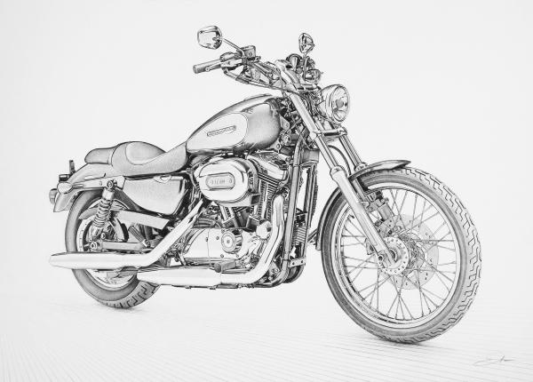 my new blog  harley davidson sportster custom