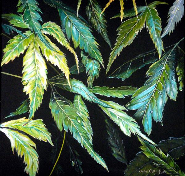 japanese maple leaves. Japanese Maple Leaves Painting