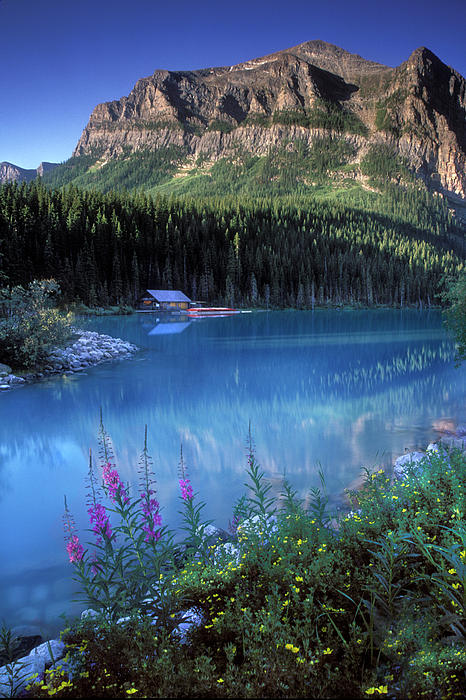 Lake Louise Banff Canada Photograph  - Lake Louise Banff Canada Fine Art Print