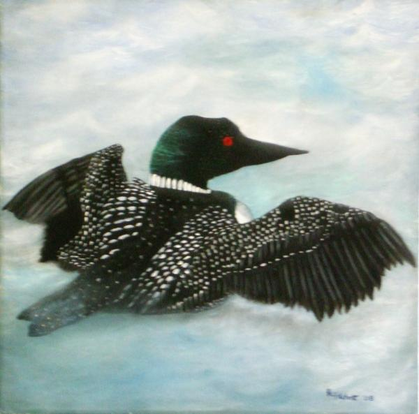 common loon images. Loon Painting - Loon Fine Art