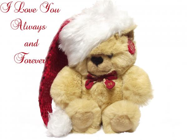 Christmas I Love You quotes.lol-rofl.com