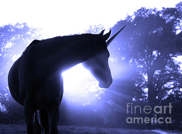 Magic Unicorn In Blue Photograph  - Magic Unicorn In Blue Fine Art Print