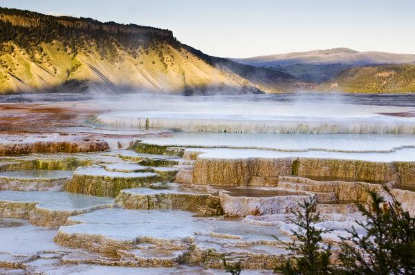 external image mammoth-hot-springs-chad-davis.jpg