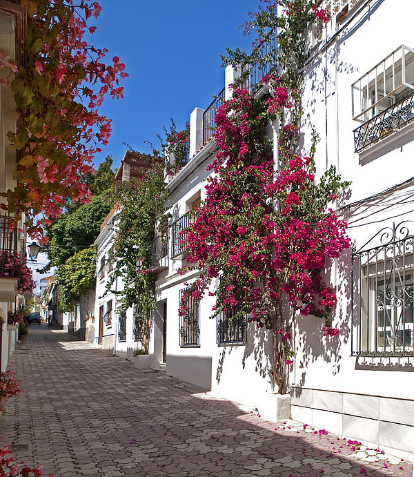 Marbella Old Town Photograph - Marbella Old Town Fine Art Print