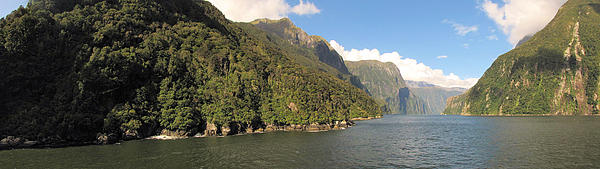 C H Apperson - Milford Sound NZ 3