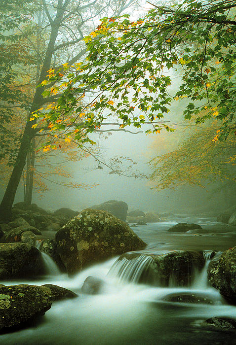Chuck Wickham - Misty Mountain Stream