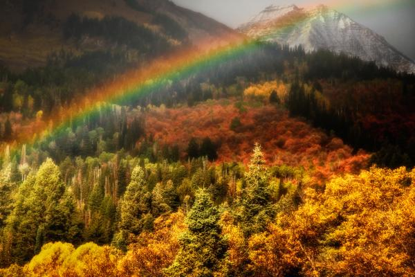 colors of rainbow. Autumn Colors and Rainbow