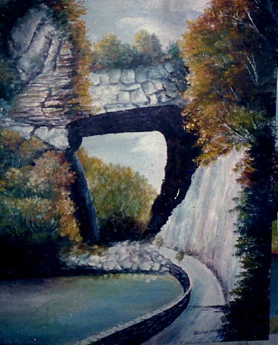 Anne-Elizabeth Whiteway - Natural Bridge