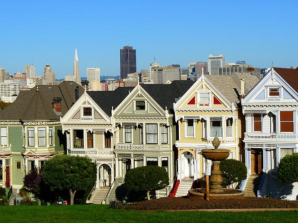 Painted Ladies 3 Photograph  - Painted Ladies 3 Fine Art Print