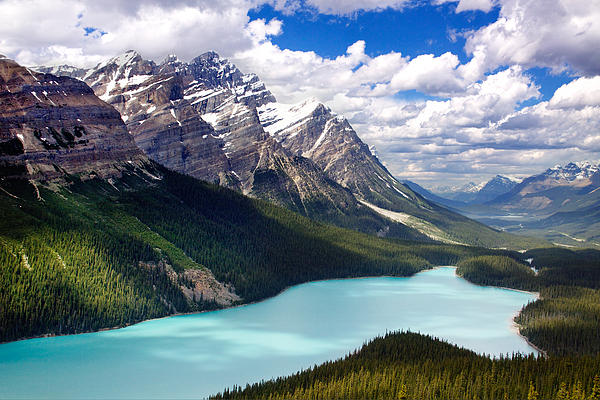 Julius Reque - Peyto Lake in Jasper