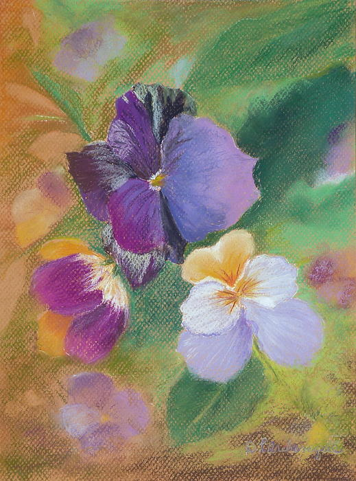 Pretty Pansies Pastel
