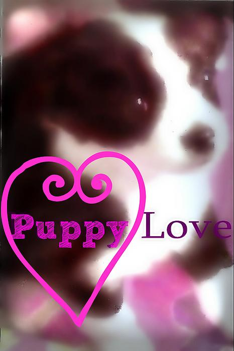 Sherry Gombert - Puppy Love