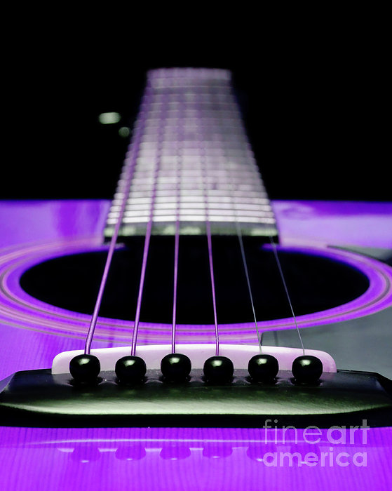 Andee Photography - Purple Guitar 15