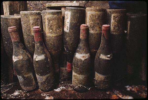 Indoor Photograph - Red Wine Bottles, Covered With Mold by James L. Stanfield