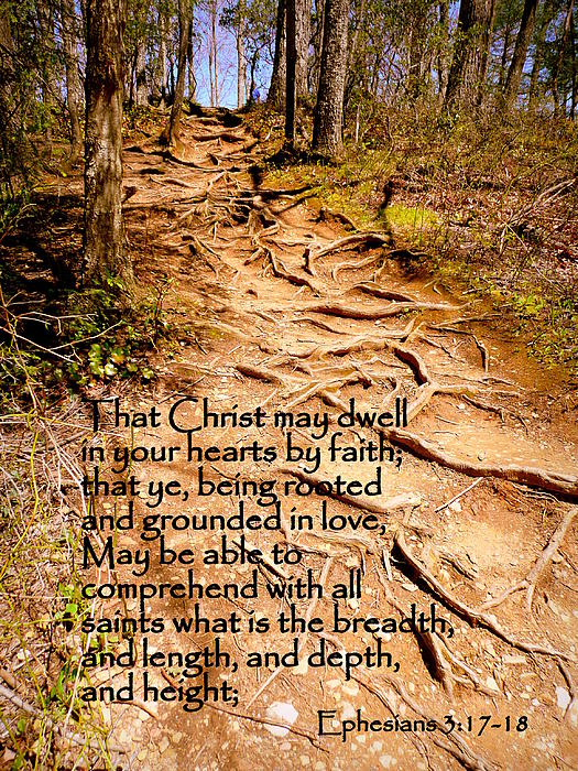 Cindy Wright - Rooted Path with Scripture